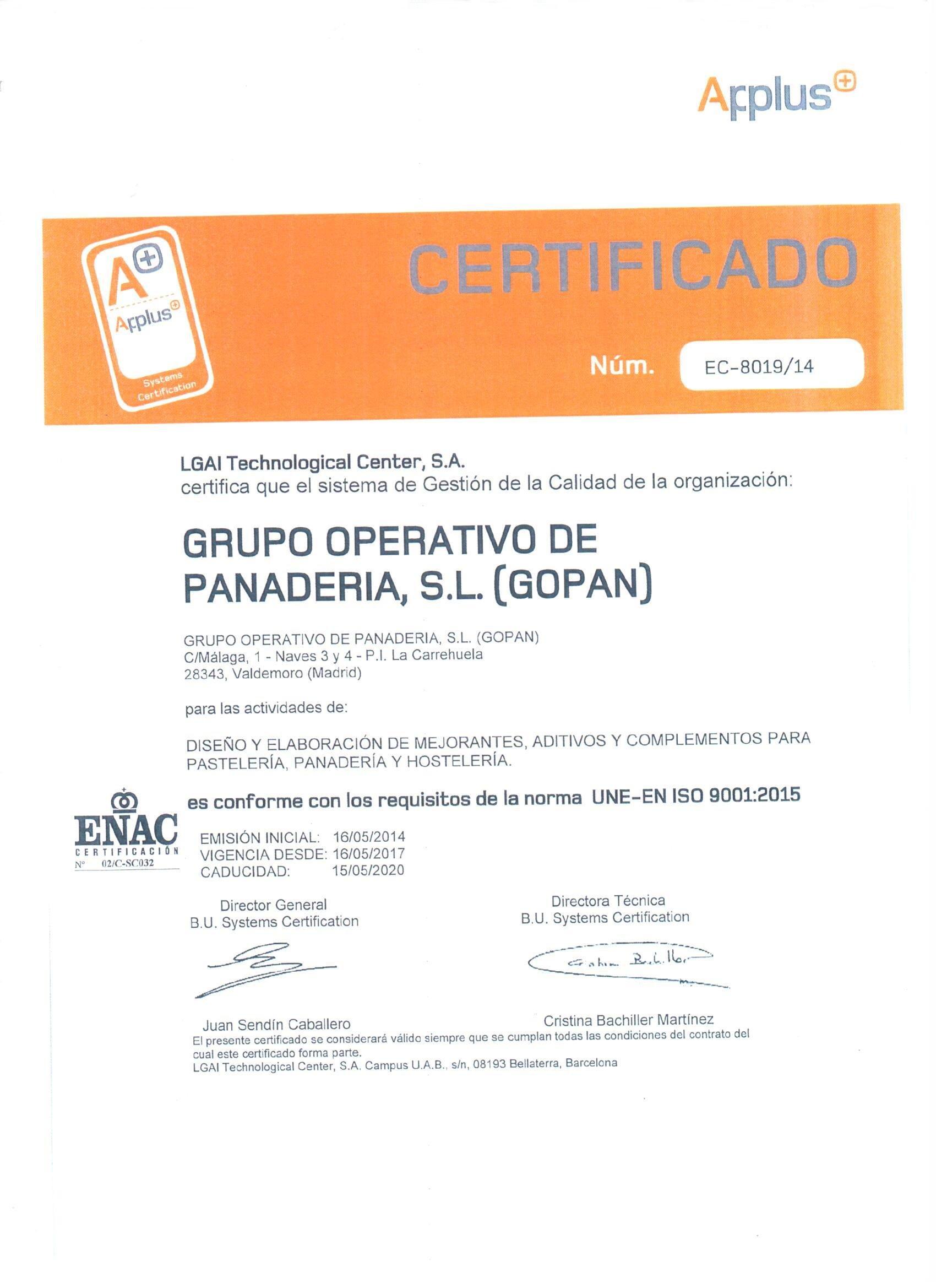 ISO 2020 ESPAÑOL www.gopan.es